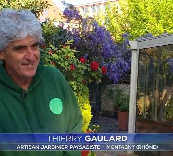 Thierry Gaulard sur TF1