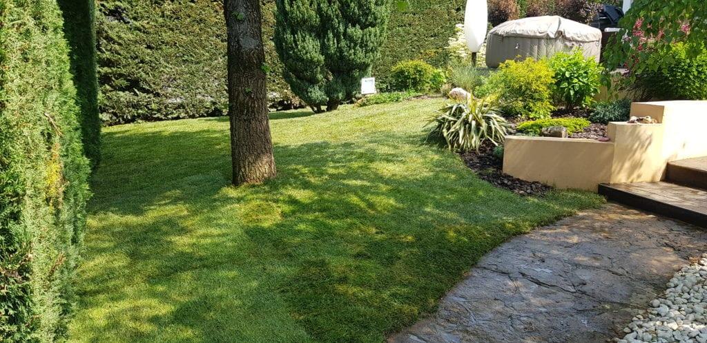 Photo d'un jardin où le gazon a été renouvelé