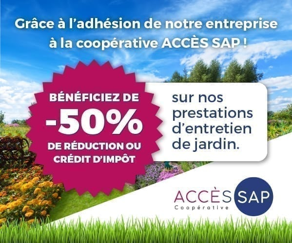 Crédit d'impôt accès SAP