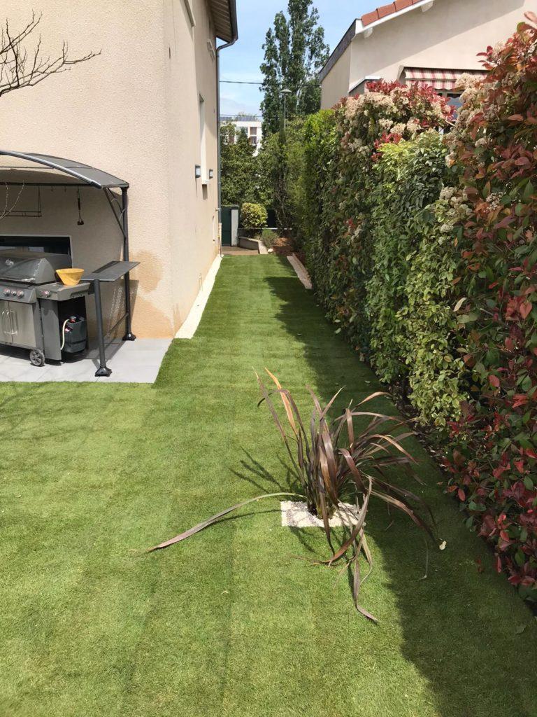 Un tapis de verdure
